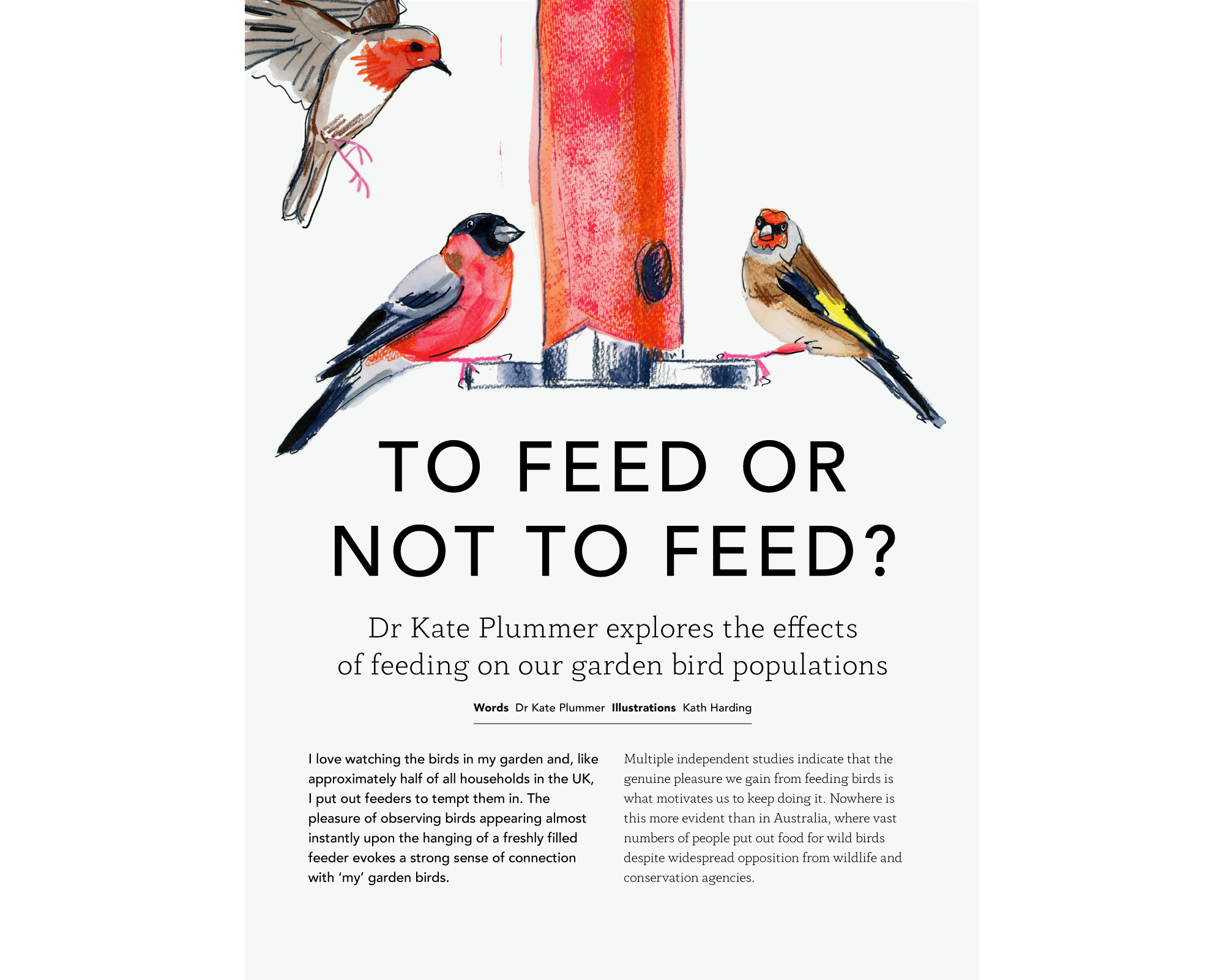 To Feed or Not To Feed      Kath Harding